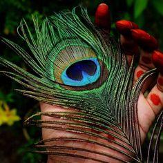 Pinterest : @kj8774 Radha Krishna Songs, Krishna Flute, Lord Krishna Images, Radha Krishna Pictures, Radha Krishna Photo, Krishna Photos, Krishna Art, Radhe Krishna, Shree Krishna Wallpapers
