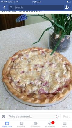 RHUBARB CUSTARD PIE!    1 -9 inch Pie Crust ( unbaked)    Pie filling  1 1⁄4 cups sugar  1⁄4 teaspoon salt  3 tablespoons flour  2 eggs, beaten  4 cups rhubarb, chopped into small pieces  Topping   1⁄2 cup sugar  1⁄2 cup flour  1⁄2 cup butter  1 pinch salt    Preheat the oven at 350 degrees F. Stir together the dry ingredients for the filling. Stir in the beaten eggs, then add the chopped rhubarb and mix all together. Pour into unbaked pie shell. Topping: Mix together the sugar and flour in…