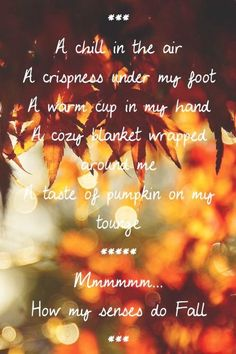 Oh how I love Fall~Harvest~Autumn Hello Autumn, Autumn Day, Autumn Leaves, Fall Winter, Fall Days, Bliss, Nature Sauvage, Seasons Of The Year, Mabon