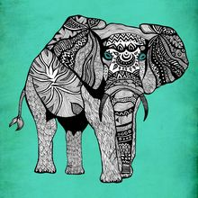 ELEPHANT OF NAMIBIA, Pom Graphic Design via Urban Arts