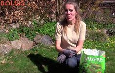 VIDEO: Skal min græsplæne have kalk?