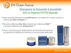 JM Ocean Avenue Ice Element by Shelly Maguire by Francesca Dellarolle via slideshare