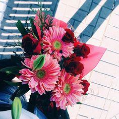 Imagen de flowers, pink, and rose