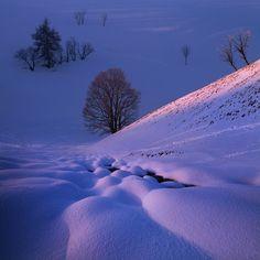 "Frosty evening in the mountain valley - <a href=""https://www.instagram.com/danielrerichacz"">INSTAGRAM</a> | <a href=""http://www.danielrericha.cz"">WWW.DANIELRERICHA.CZ</a> | <a href=""http://phototours.cz/"">WWW.PHOTOTOURS.CZ</a> | <a href=""https://www.facebook.com/daniel.rericha.photography/"">FACEBOOK</a>"