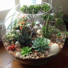 terrario em vaso de vidro redondo com enfeites