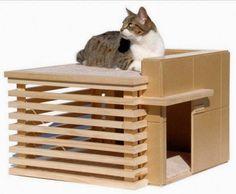 ARQUITETANDO IDEIAS: Gatos em casa - ambientes felinos
