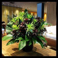 Centerpiece Decorations, Party Centerpieces, Ikebana, Vase Arrangements, Flower Crafts, Green Leaves, Fresh Flowers, Floral Design, Tropical