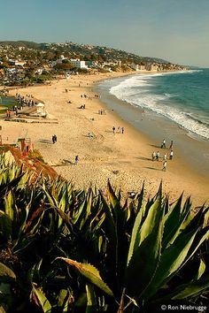 Laguna Beach; i have been there before but I want to do it again.!