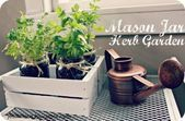 Precious Tips for Outdoor Gardens In general, almost half of the houses in the world… Mason Jar Herbs, Mason Jar Herb Garden, Mason Jar Planter, Mason Jars, Herb Garden Planter, Diy Garden, Garden Ideas, Herb Gardening, Indoor Garden
