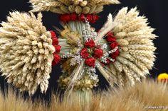 Harvest Festival decorations, Jastkowice, Poland[source]. Dried Flowers, Silk Flowers, Polish Wedding Traditions, Festival Decorations, Wedding Decorations, Polish Folk Art, Family Roots, Fall Projects, Folklore