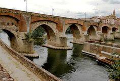 Pont Vieux Albi (1040), France