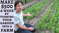 Make $500 a Week By Turning Your Garden into a Farm - YouTube