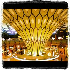 Some awesome architecture can be seen at the arrivals lobby at the Abu Dhabi airport Crazy People, Strange People, Architectural Columns, Abu Dhabi, One Pic, Signage, Awesome, Amazing, Train Station