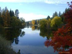 Park in Bend Oregon during the fall.    please if you repost this give credit to True Mace Photography