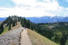 Hurricane Ridge, Olympic Peninsula
