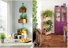 trang tri nha bang cay canh 1 yisi1 12 Creative Ideas How To Display Your Indoor Plants