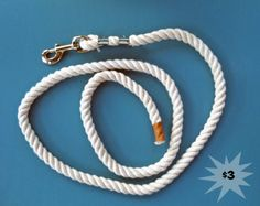 diy horse lead. I once made one in my fourth grade class. cant remember why i was doing that for a presentation. even though i was armed w/ an anvil AND a hammer, i only smashed my fingers once