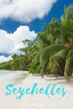 Unsere schönsten Seychellen Bilder