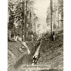 Laying Wooden Pipe near Astoria - c. 1884  This amazed me. I didnt know wooden pipe was ever used.