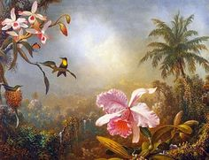 Orchids and hummingbirds - the tropical art of Martin Johnson Heade