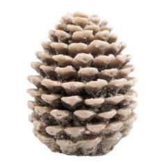 Rustic Ramble Pinecone Candle
