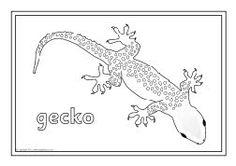 Reptiles colouring sheets (SB2470) - SparkleBox