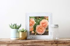 This photo was taken in the rose garden at the Raleigh Little Theatre in the spring of 2016. It's such a wonderful little place! These roses were my absolute favorite. I love the peachy-coral color! This would be beautiful in a gallery wall, especially with a few of my other rose photographs. The photo is professionally printed on Kodak Professional Supra Endura VC Digital Paper with a lustre coating for a matte finish.    The first photo shows the square crop of this print.    Please choose…