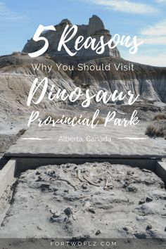 Would you go on a hike to uncover dinosaur fossils? Then you must visit Dinosaur Provincial Park. Here are 5 reasons why you should this UNESCO World Heritage Site. Ontario, Vancouver, Toronto, Alberta Travel, Canadian Travel, Visit Canada, Dinosaur Fossils, Dinosaur Park, Travel Couple