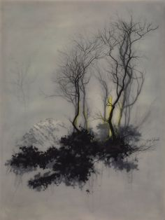"""supersonicart: """"Brooks Salzwedel, Recent Work.Recent stunning work by the always fascinating Brooks Salzwedel (Previously on Supersonic). His works are created by layering vellum and varnish which. Landscape Drawings, Art Drawings, Art Japonais, Art Et Illustration, Encaustic Painting, Art Design, Tree Art, Japanese Art, Oeuvre D'art"""