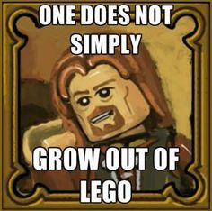 Whenever someone says I'm too old for Lego…