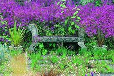Cothay Manor Garden, Somerset, England.