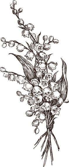 Lily Of the Valley Flower Drawing. Lily Of the Valley Flower Drawing. Lily Of the Valley Flower Drawing Illustration Black and Lily Tattoo Design, Flower Tattoo Designs, Floral Tattoo Design, Body Art Tattoos, Sleeve Tattoos, Drawing Tattoos, Flower Tattoo Drawings, May Birth Flowers, Birth Flower Tattoos