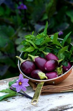 Roasted eggplant and mint are two ingredients we will soon have in abundance! We may have to try this recipe from the White on Rice Couple.