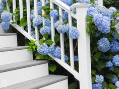 Titan Pro Railing was created with the installer in mind. Rail sections assemble in minutes; Outdoor Stair Railing, Deck Railings, Stair Brackets, Vinyl Railing, Outdoor Living, Diys, Decking, Outdoor Life, Bricolage