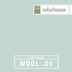 Colorhouse WOOL .01 - Like a puddle. Slight, light blue. The perfect hue for sleeping spaces- this color remains soft when coupled with dark woods in furniture and flooring.
