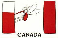 Canada, Home Decor, Homemade Home Decor, Decoration Home, Interior Decorating