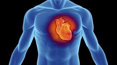 """Drogas para reducir las """"grasas malas"""" no protegen el corazón."""
