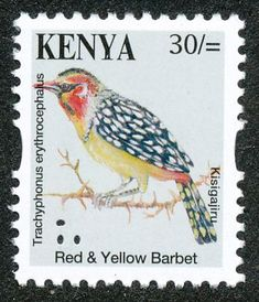 Red-and-yellow Barbet stamps - mainly images - gallery format