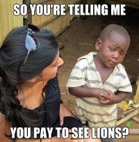 Skeptical Third World Child #comics #humor #pic #fun