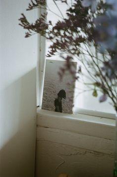 Palmetto Studio, photography Claire Cottrell