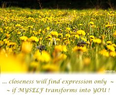 ... #closeness will find expression only ~ if MYSELF transforms into YOU !