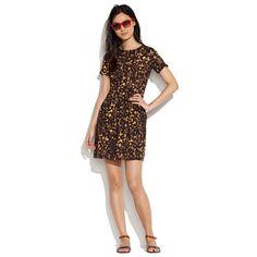 Spotshadow Songbird Dress