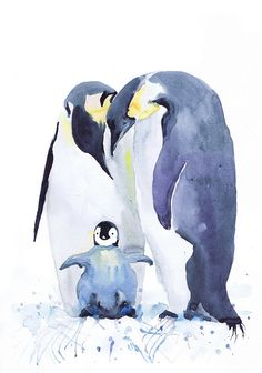 Penguin , watercolor print , family of penguins , Bird with chicks,  Fine Art nursery decor, penguin baby , childrens art, Illustration