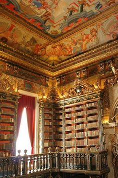 The Coimbra University Library in Coimbra, Portugal, also known as La Biblioteca Joanina, was built between 1717 and 1728. This Baroque library is one of the grandest and most opulent in the world, not to mention one of Europe's richest libraries.Found here.
