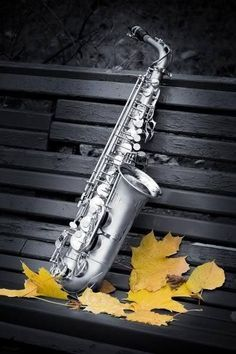 Sax. Awaiting to temper heroic, adventurous stamina with a balance of disciplined, technical perfection.