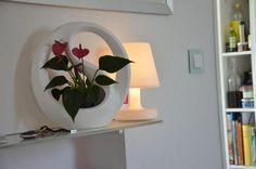 Stilvolle Zimmerdeko und Raumdeko mit Cancoon - Blumen im großen Rahmen | VALENTINO Wohnideen