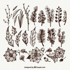 Colección de flores y hojas dibujadas a mano Vector Gratis