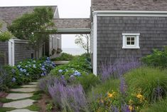 """a Nantucket garden """"tended and cared for by Jenne Verney of Grey Lady Gardens on Nantucket."""""""