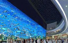 Underwater aquarium & zoo ---Dubai