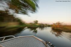 Navigating the Okavango Delta by boat Okavango Delta, Safari, Country Roads, Boat, Island, Photos, Dinghy, Pictures, Boats